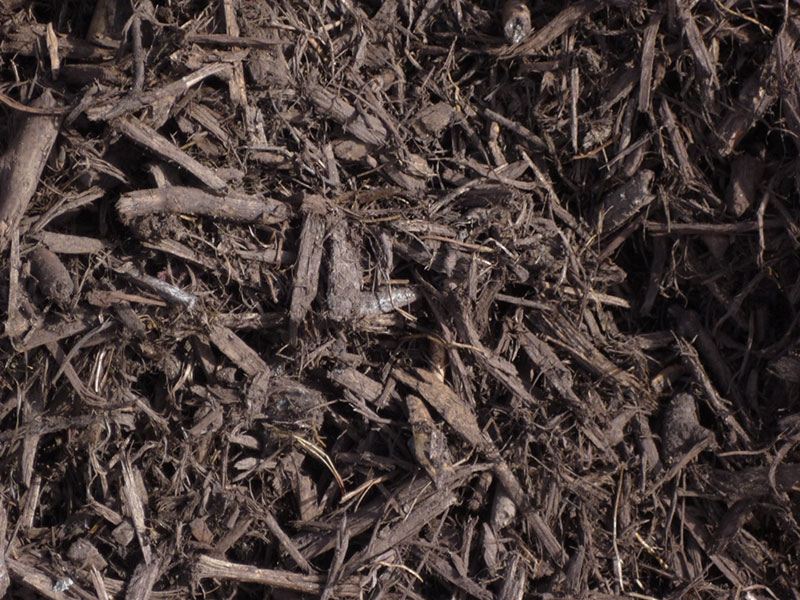 chocolate bark soil conditioner