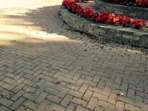 Bricked Walkway